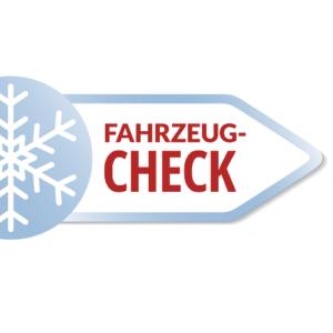 Der Fahrzeug-Check
